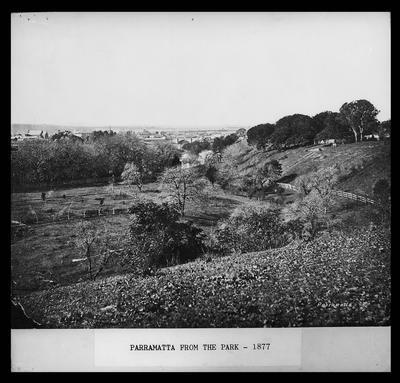 Parramatta from the Park - 1877