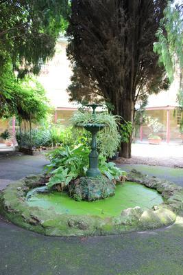 Female Factory Site - Yard 1 Female F fountain