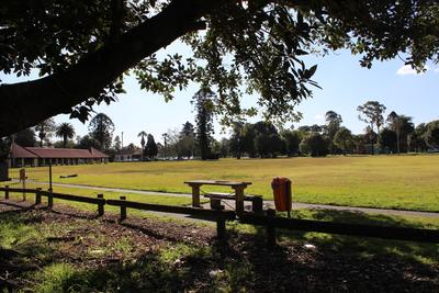 Cricket Oval