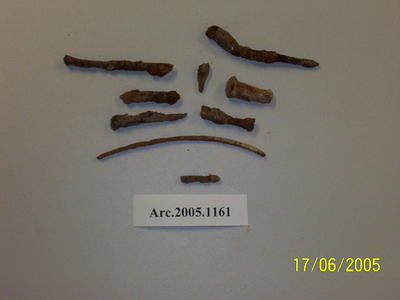 Various metal fragments including nail, rod and wire fragments