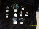 Six (6) glass fragments of various sizes
